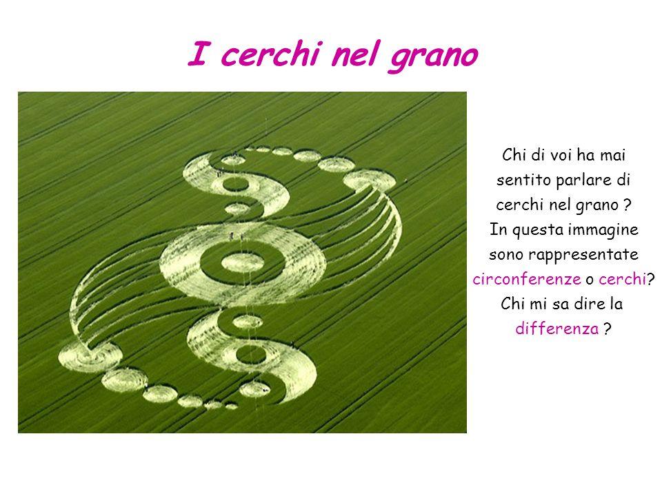Chi di voi ha mai sentito parlare di cerchi nel grano ? In questa immagine sono rappresentate circonferenze o cerchi? Chi mi sa dire la differenza ? I