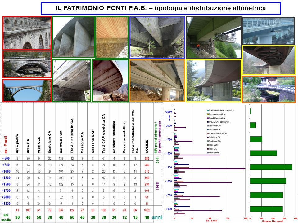 IL PATRIMONIO PONTI P.A.B. – tipologia e distribuzione altimetrica anni