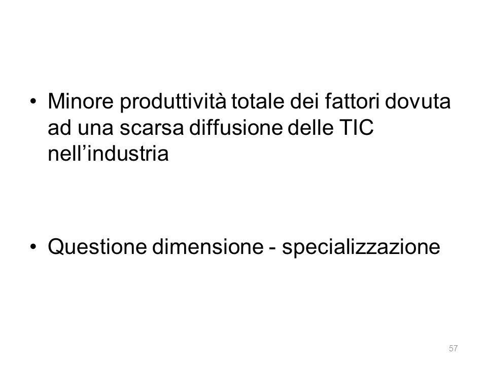 Minore produttività totale dei fattori dovuta ad una scarsa diffusione delle TIC nell'industria Questione dimensione - specializzazione 57
