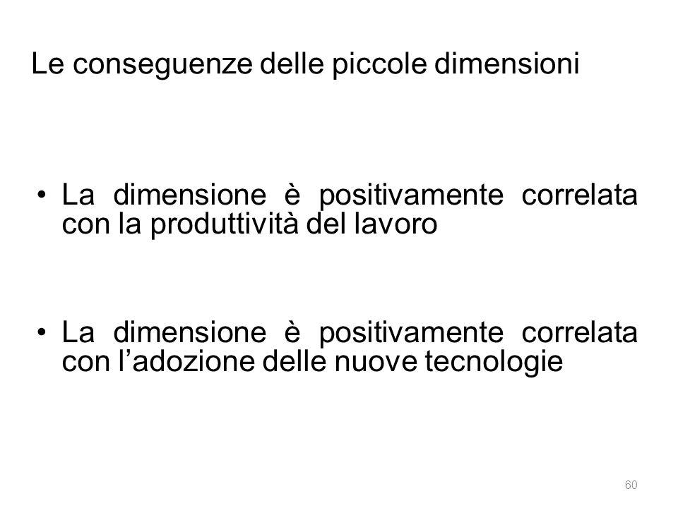 Le conseguenze delle piccole dimensioni La dimensione è positivamente correlata con la produttività del lavoro La dimensione è positivamente correlata con l'adozione delle nuove tecnologie 60