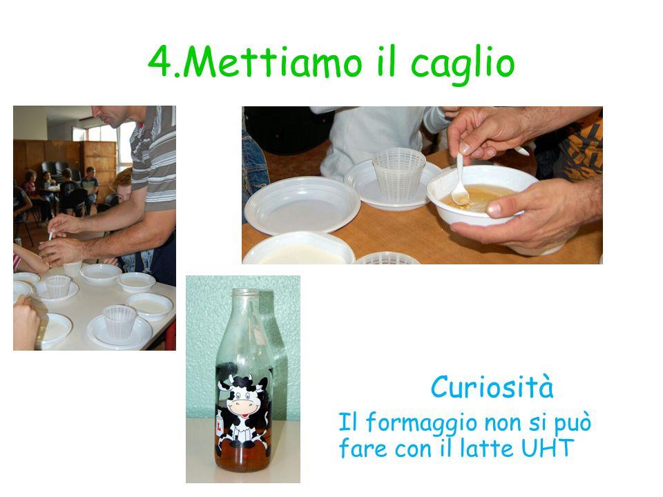 4.Mettiamo il caglio Curiosità Il formaggio non si può fare con il latte UHT