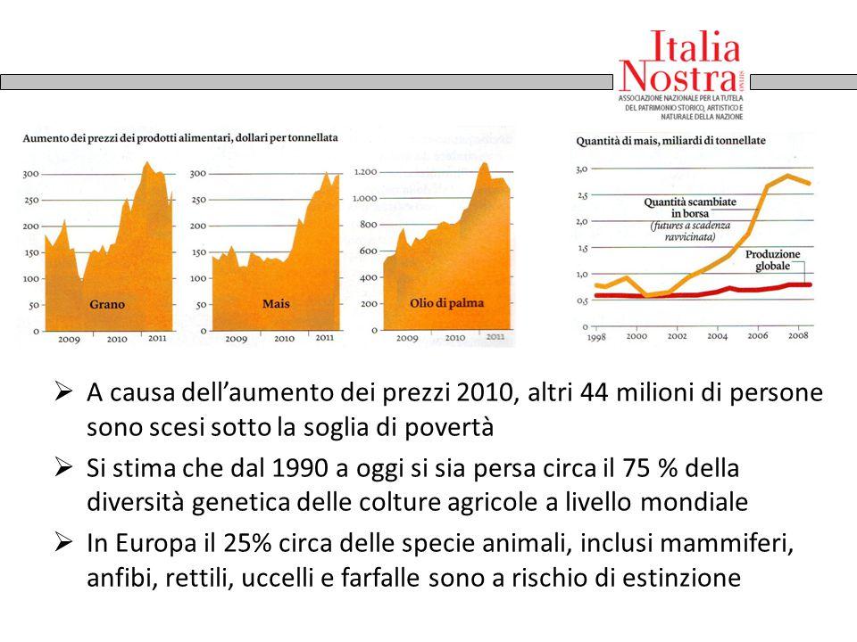 A.Lorenzetti, Allegoria del Buon Governo 1337-40  A causa dell'aumento dei prezzi 2010, altri 44 milioni di persone sono scesi sotto la soglia di pov