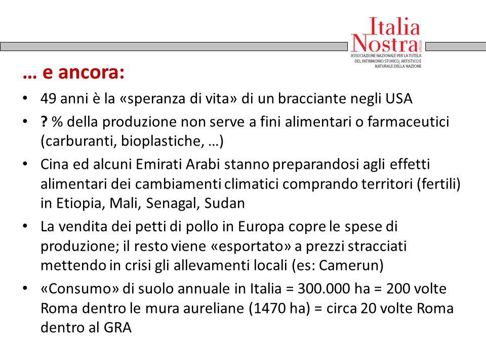A.Lorenzetti, Allegoria del Buon Governo 1337-40 … e ancora: 49 anni è la «speranza di vita» di un bracciante negli USA ? % della produzione non serve