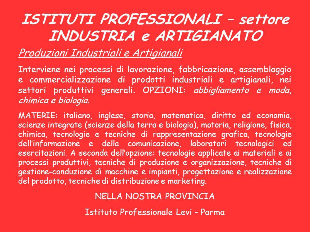 ISTITUTI PROFESSIONALI – settore INDUSTRIA e ARTIGIANATO Produzioni Industriali e Artigianali Interviene nei processi di lavorazione, fabbricazione, a
