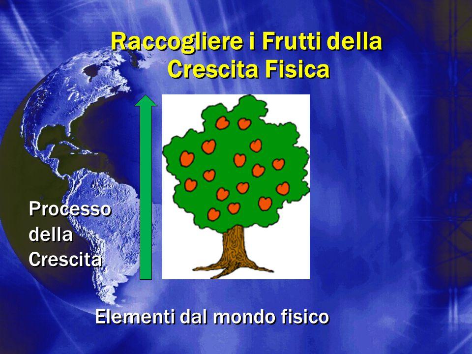 Raccogliere i Frutti della Crescita Fisica Raccogliere i Frutti della Crescita Fisica Processo della Crescita Elementi dal mondo fisico