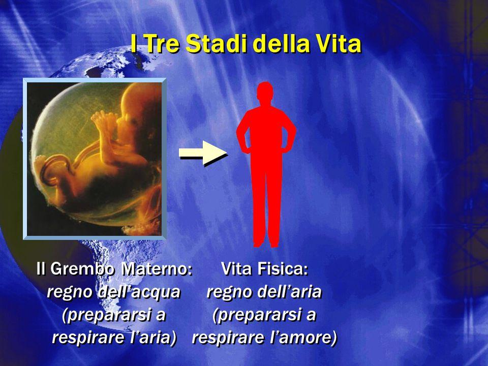 Vita Fisica: regno dell'aria (prepararsi a respirare l'amore) Vita Fisica: regno dell'aria (prepararsi a respirare l'amore) I Tre Stadi della Vita Il