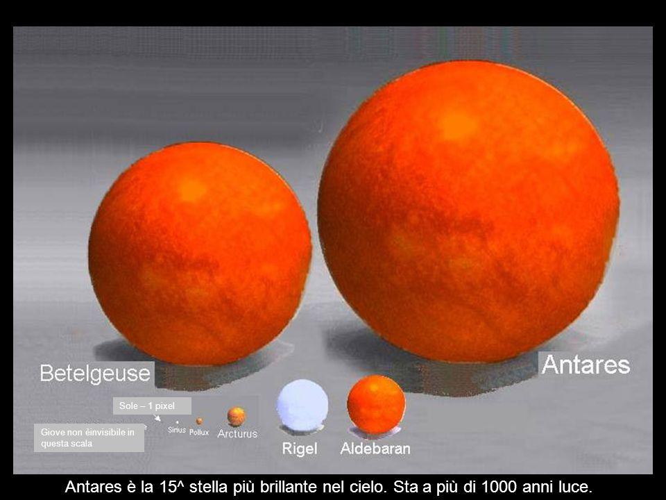Sole Sirio Arturo Giove ha 1 pixel La Terra non è visibiie in questa scala Polluce