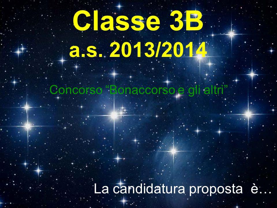 """Classe 3B a.s. 2013/2014 Concorso """"Bonaccorso e gli altri"""" La candidatura proposta è…"""