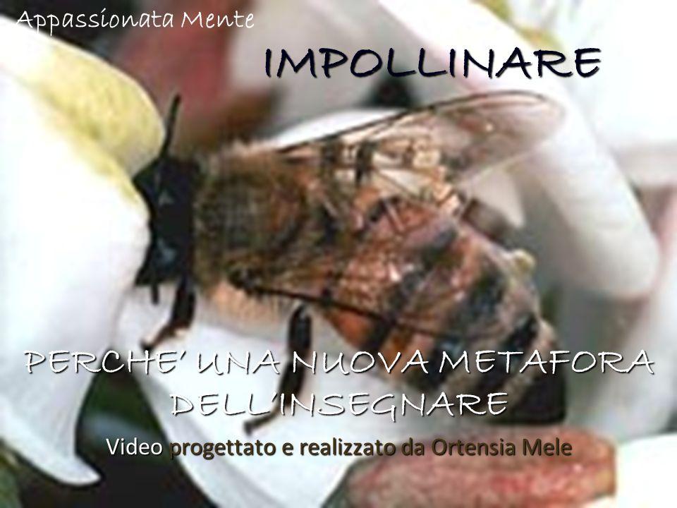 IMPOLLINARE IMPOLLINARE PERCHE' UNA NUOVA METAFORA DELL'INSEGNARE Video progettato e realizzato da Ortensia Mele Appassionata Mente