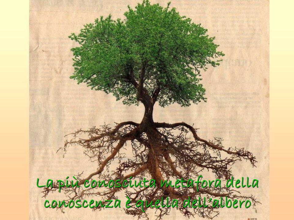 La più conosciuta metafora della conoscenza è quella dell'albero