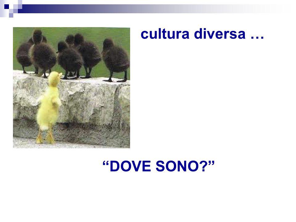"""cultura diversa … """"DOVE SONO?"""""""