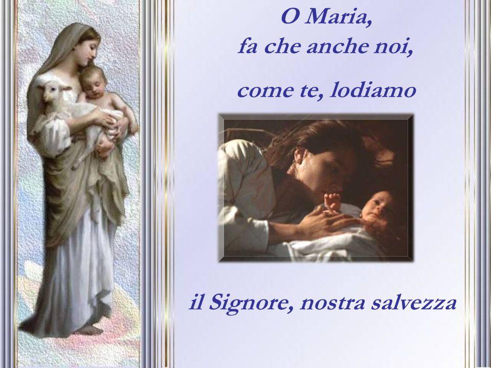 O Maria, fa che anche noi, come te, lodiamo il Signore, nostra salvezza
