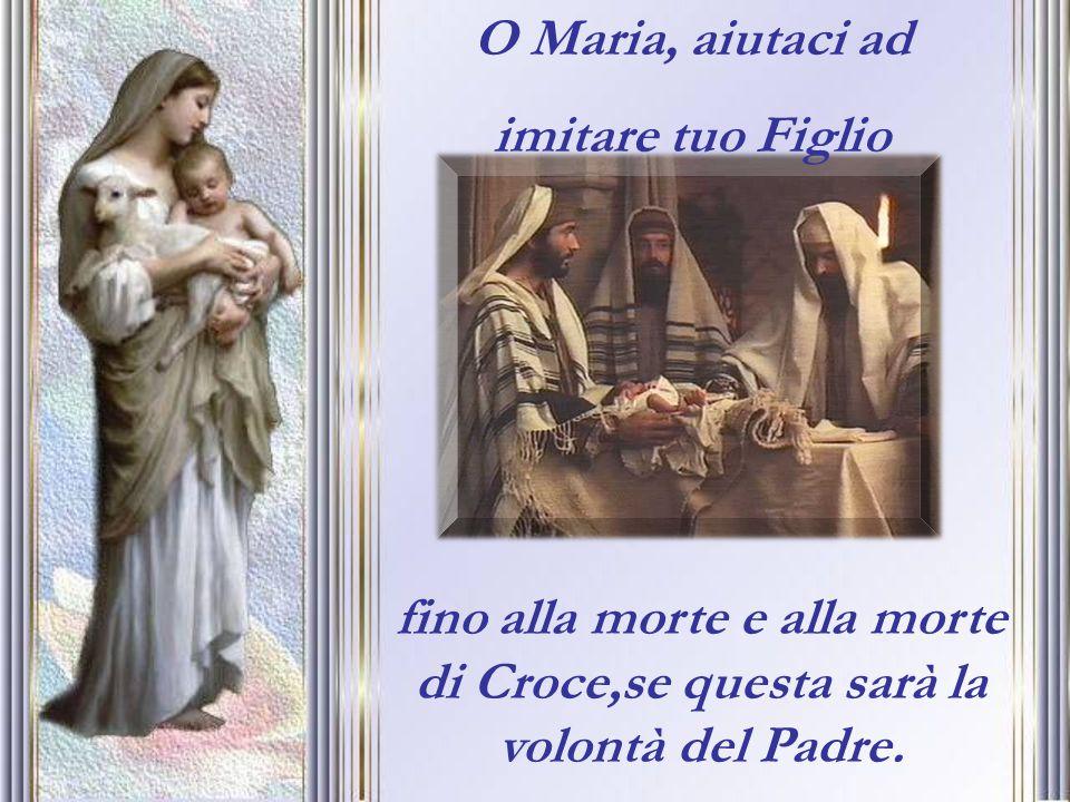 O Maria, aiutaci ad imitare tuo Figlio fino alla morte e alla morte di Croce,se questa sarà la volontà del Padre.