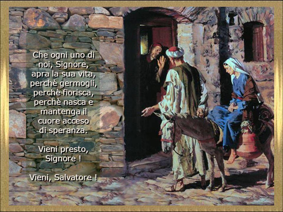 I profeti mantengono accesa la speranza di Israele. Noi, come un simbolo, accendiamo le nostre due candele. Il vecchio tronco sta germogliando; si rin