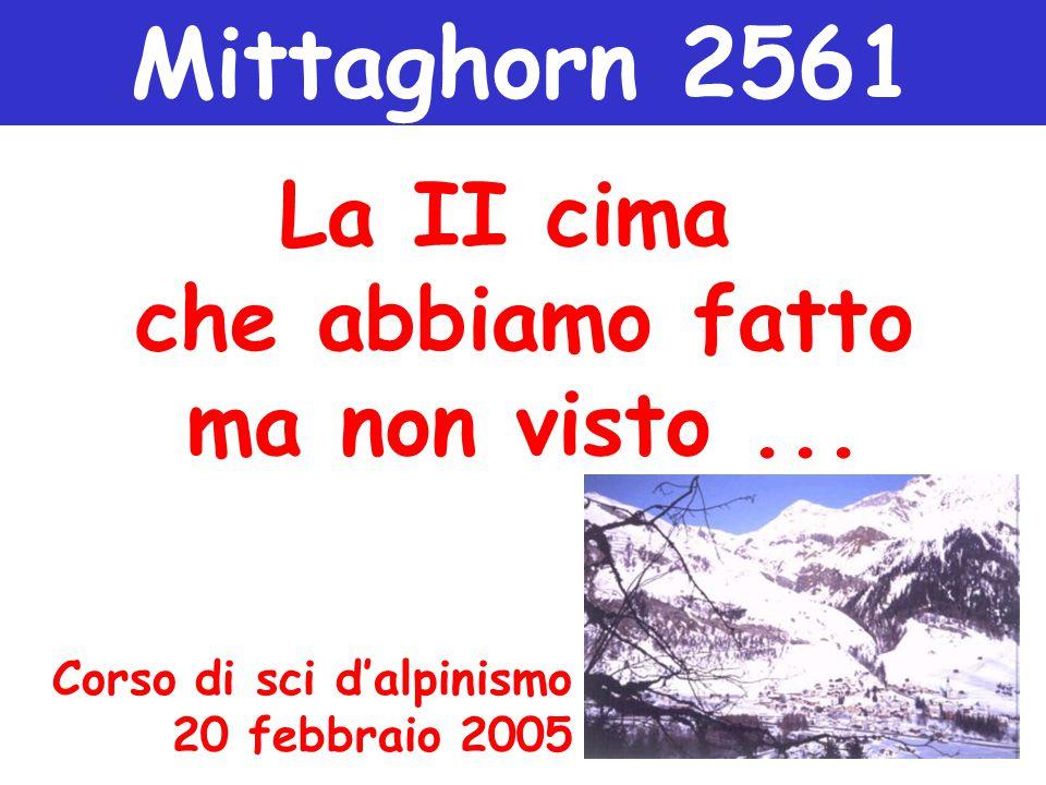 Mittaghorn 2561 La II cima che abbiamo fatto ma non visto... Corso di sci d'alpinismo 20 febbraio 2005