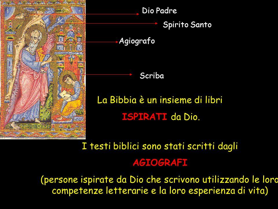 La Bibbia è un insieme di libri ISPIRATI da Dio. I testi biblici sono stati scritti dagli AGIOGRAFI (persone ispirate da Dio che scrivono utilizzando
