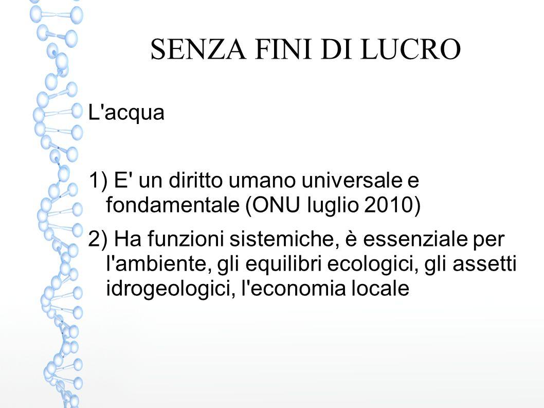 SENZA FINI DI LUCRO L'acqua 1) E' un diritto umano universale e fondamentale (ONU luglio 2010) 2) Ha funzioni sistemiche, è essenziale per l'ambiente,