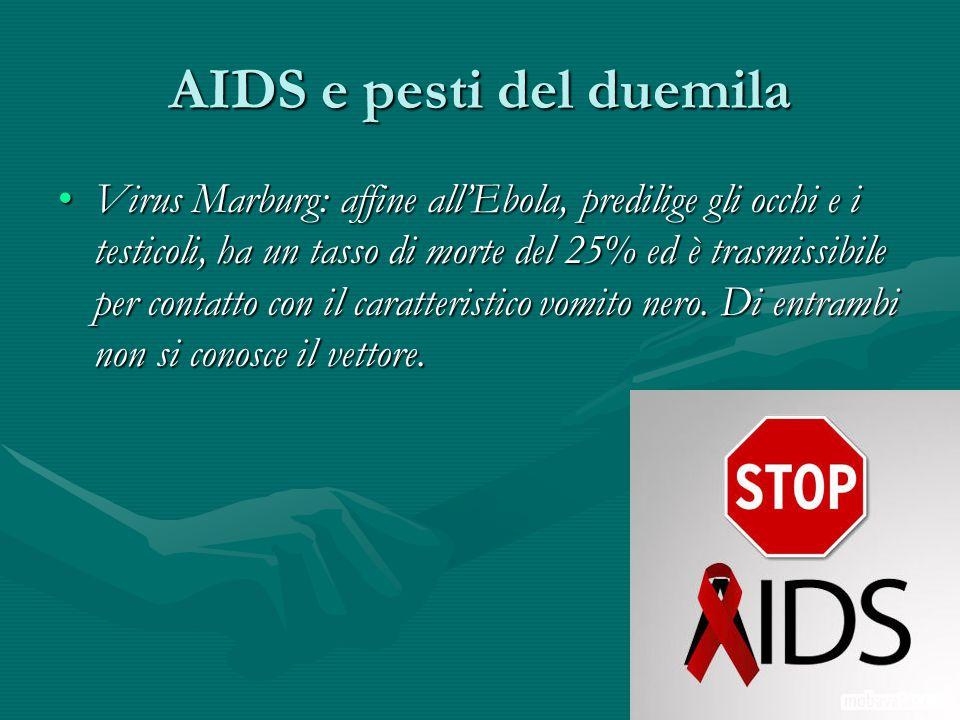 AIDS e pesti del duemila Virus Marburg: affine all'Ebola, predilige gli occhi e i testicoli, ha un tasso di morte del 25% ed è trasmissibile per conta