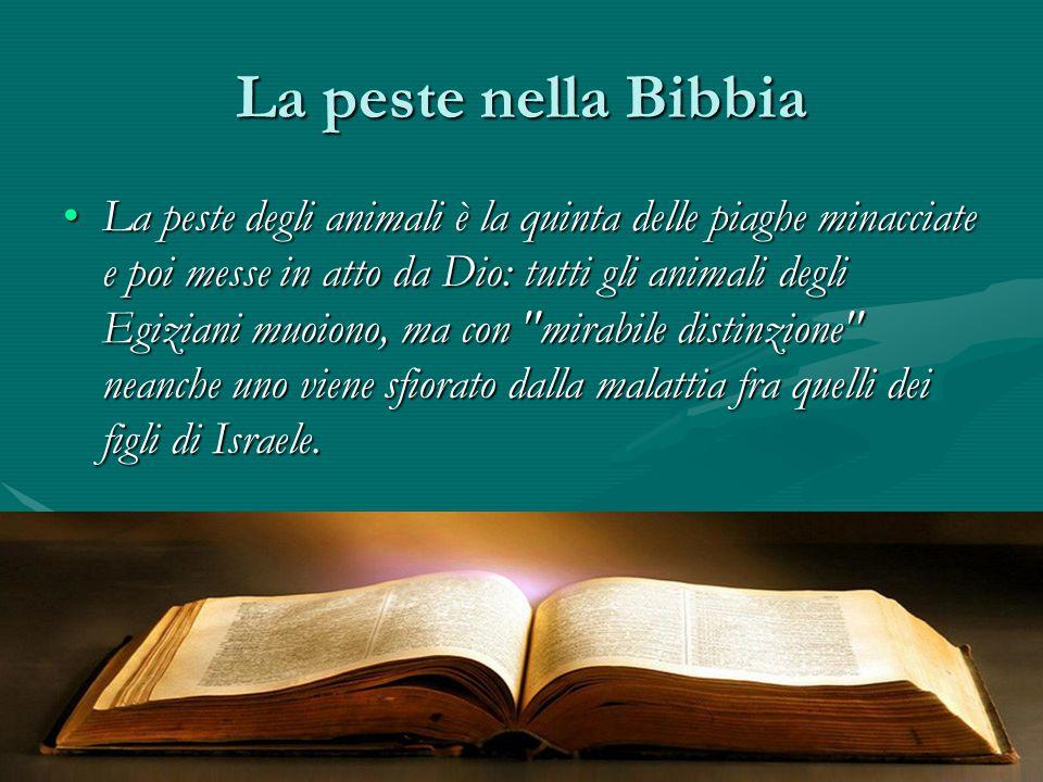 La peste nella Bibbia La peste degli animali è la quinta delle piaghe minacciate e poi messe in atto da Dio: tutti gli animali degli Egiziani muoiono,