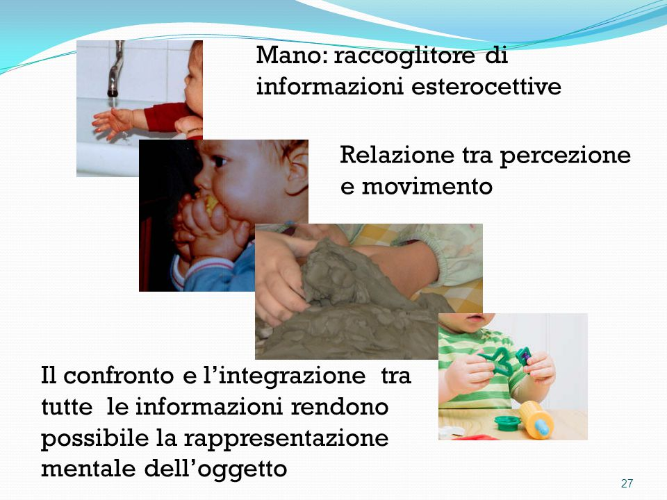 Mano: raccoglitore di informazioni esterocettive Relazione tra percezione e movimento Il confronto e l'integrazione tra tutte le informazioni rendono possibile la rappresentazione mentale dell'oggetto 27