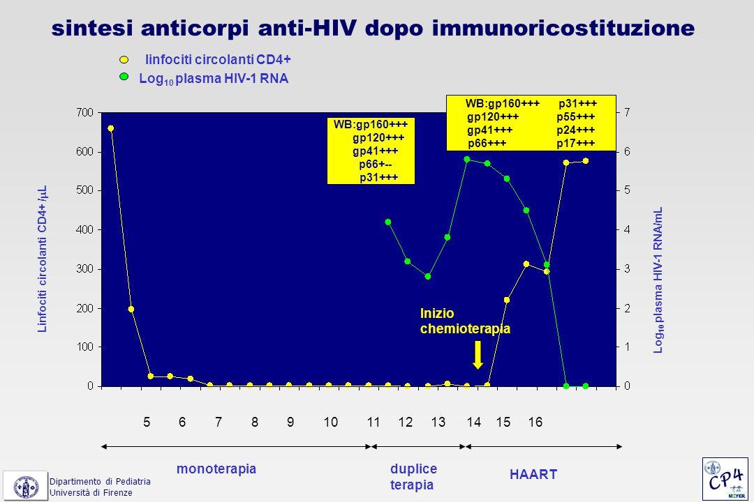 linfociti circolanti CD4+ Log 10 plasma HIV-1 RNA Linfociti circolanti CD4+ /  L Log 10 plasma HIV-1 RNA/mL duplice terapia HAART monoterapia 5 6 7 8