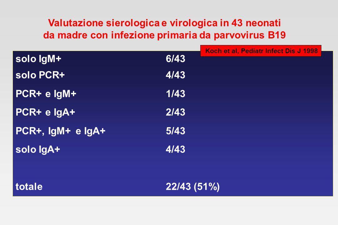 Valutazione sierologica e virologica in 43 neonati da madre con infezione primaria da parvovirus B19 solo IgM+6/43 solo PCR+4/43 PCR+ e IgM+1/43 PCR+