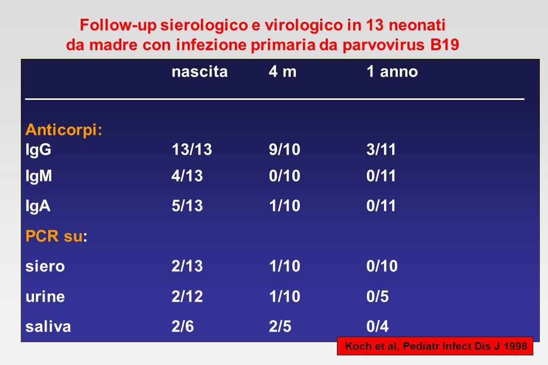 Follow-up sierologico e virologico in 13 neonati da madre con infezione primaria da parvovirus B19 nascita4 m1 anno __________________________________