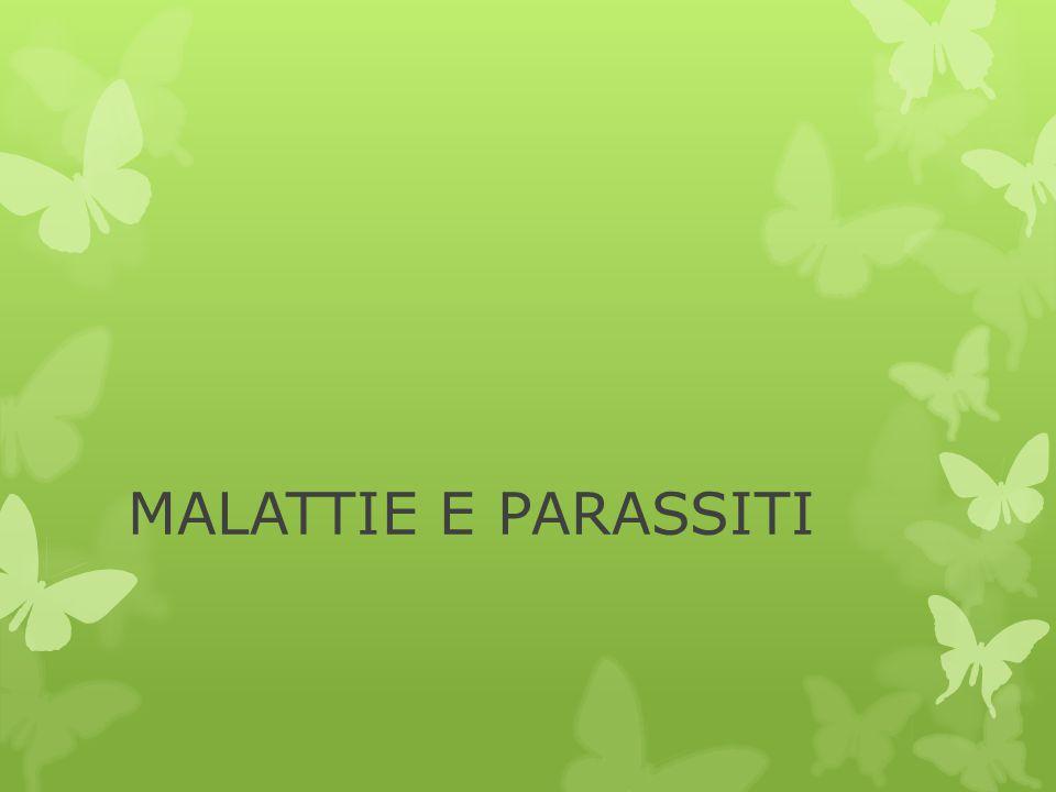 MALATTIE E PARASSITI