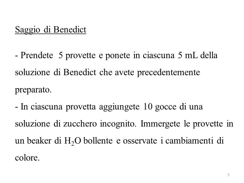 Saggio di Benedict - Prendete 5 provette e ponete in ciascuna 5 mL della soluzione di Benedict che avete precedentemente preparato. - In ciascuna prov