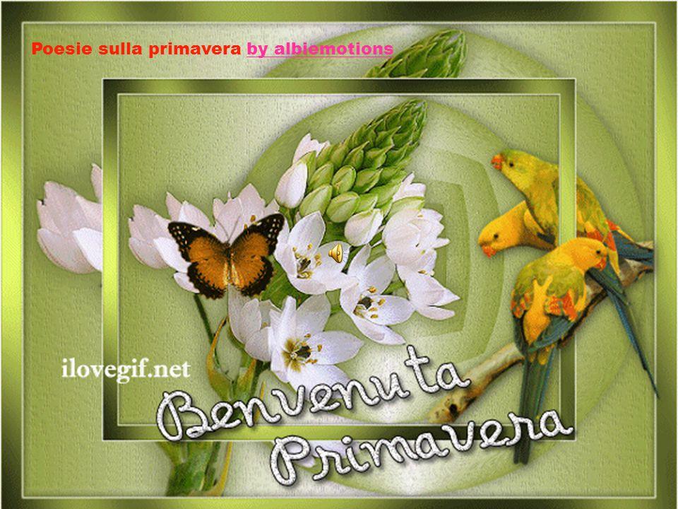 Poesie sulla primavera by albiemotionsby albiemotions
