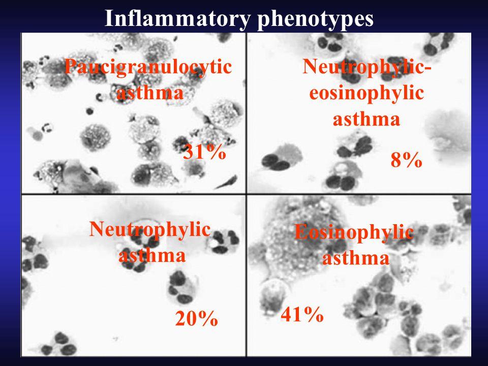 Paucigranulocytic asthma Neutrophylic- eosinophylic asthma Neutrophylic asthma Eosinophylic asthma 8% 20% 31% 41% Inflammatory phenotypes