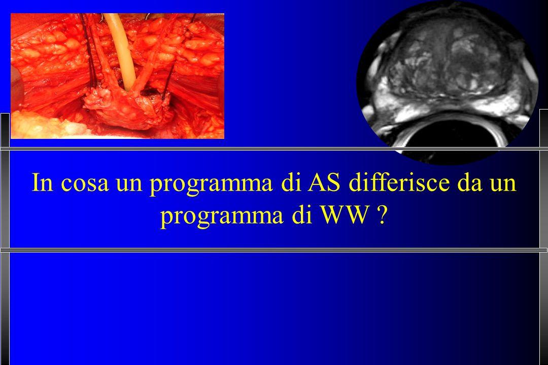 In cosa un programma di AS differisce da un programma di WW ?