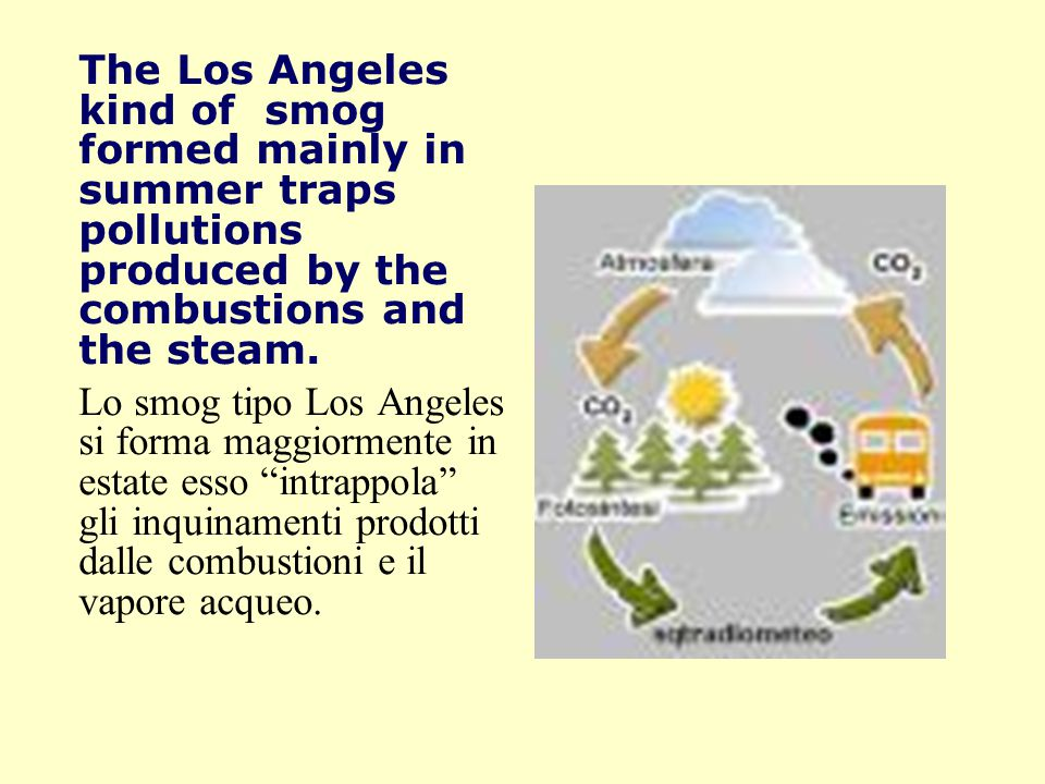 The Los Angeles kind of smog formed mainly in summer traps pollutions produced by the combustions and the steam.