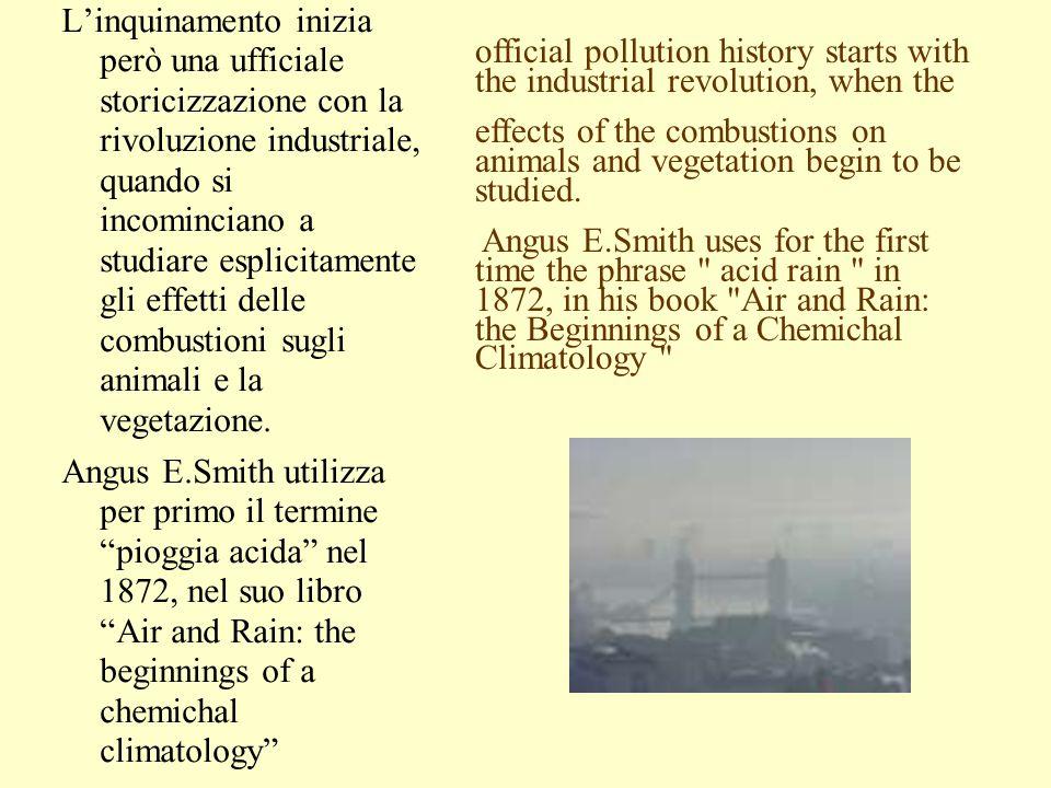 L'inquinamento inizia però una ufficiale storicizzazione con la rivoluzione industriale, quando si incominciano a studiare esplicitamente gli effetti delle combustioni sugli animali e la vegetazione.