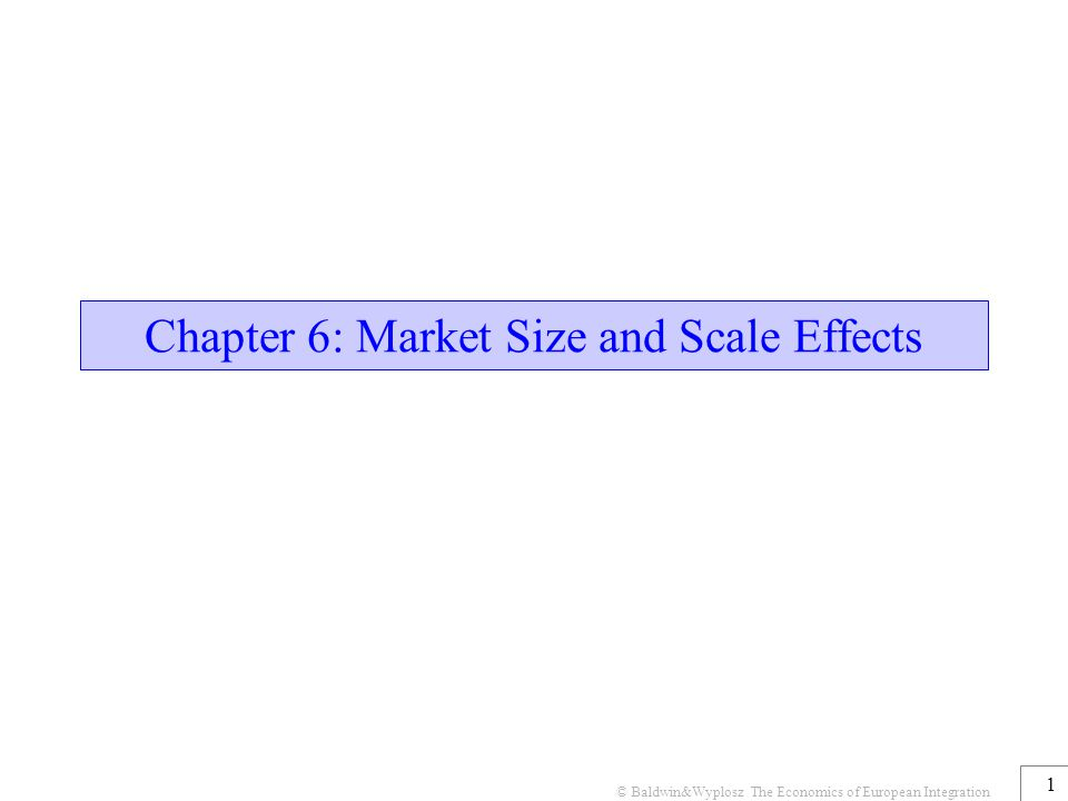 © Baldwin&Wyplosz The Economics of European Integration 1 Chapter 6: Market Size and Scale Effects