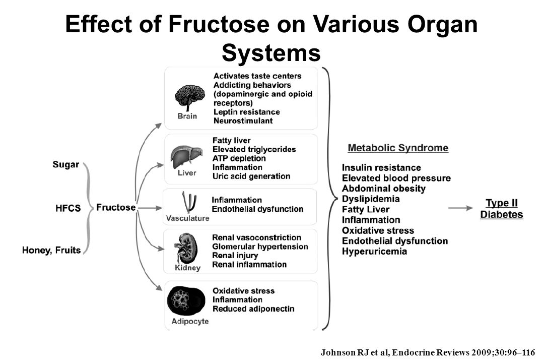 Effect of Fructose on Various Organ Systems Johnson RJ et al, Endocrine Reviews 2009;30:96–116