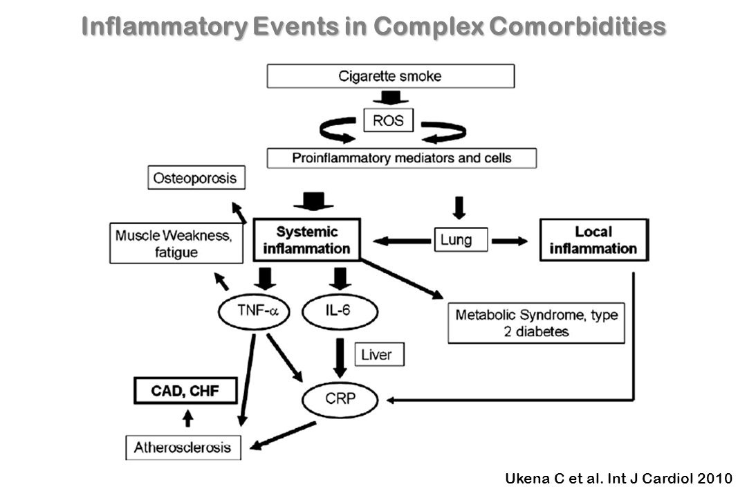 Cardiopulmonary Continuum Concept of systemic inflammatory processes as underlying pathophysiological relationship between COPD and CAD Ukena C et al.