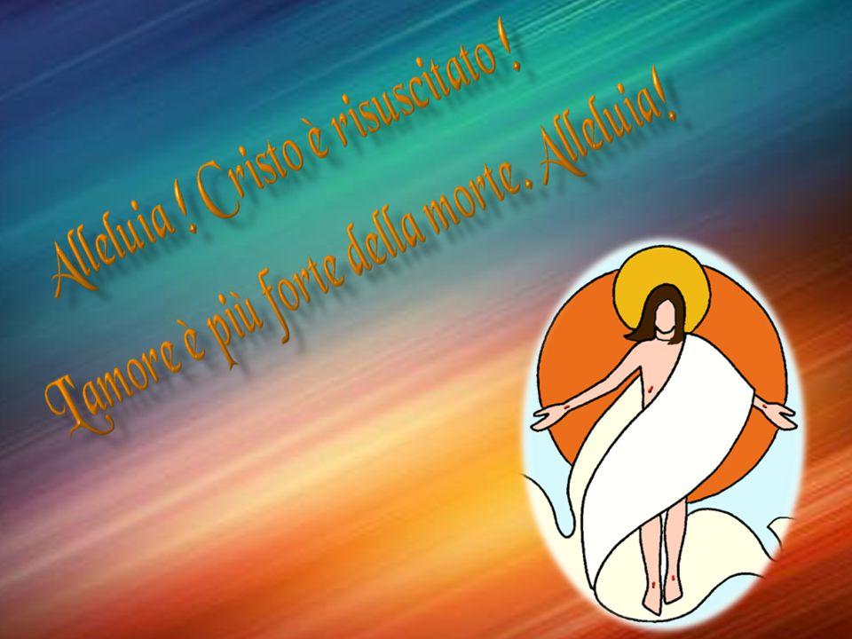 Cristo risorto, tu il Vivente, il primogenito di tutti quelli che si sono addormentati, ti cerchiamo tra i morti.