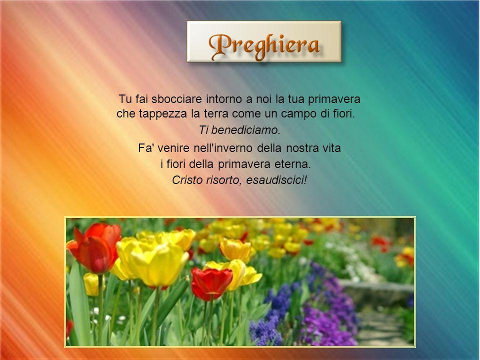 Tu fai sbocciare intorno a noi la tua primavera che tappezza la terra come un campo di fiori.