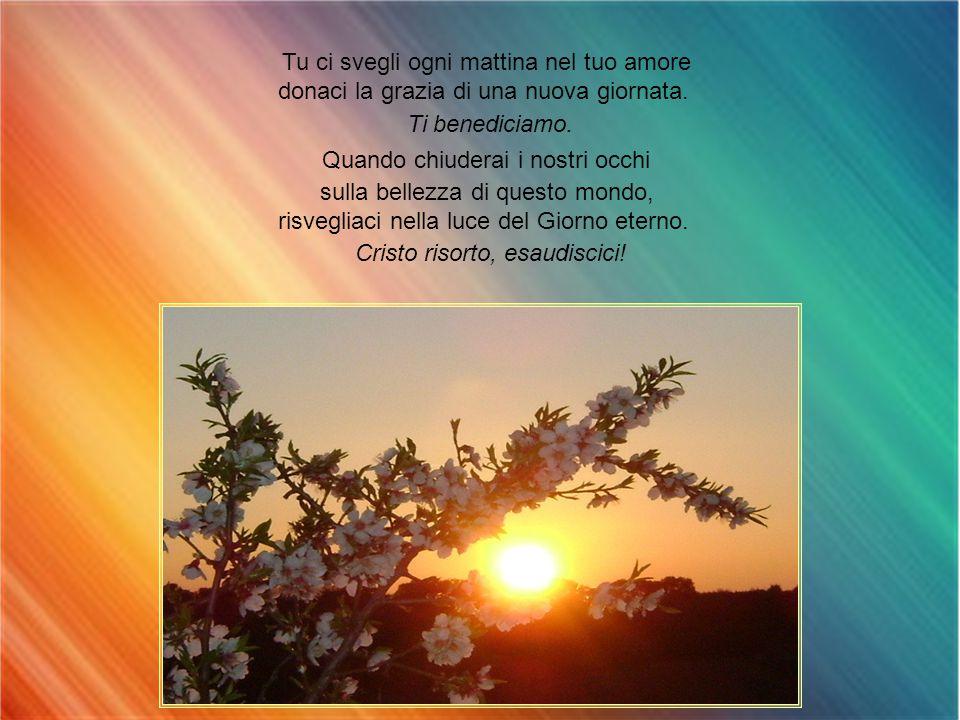 Tu ci svegli ogni mattina nel tuo amore donaci la grazia di una nuova giornata.