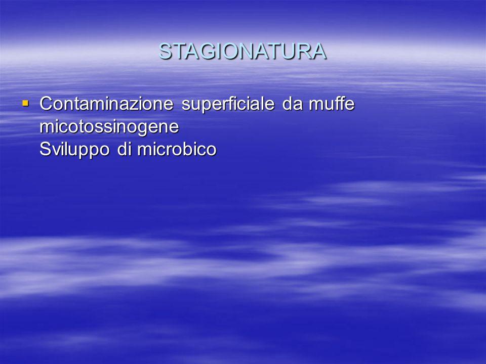STAGIONATURA  Contaminazione superficiale da muffe micotossinogene Sviluppo di microbico