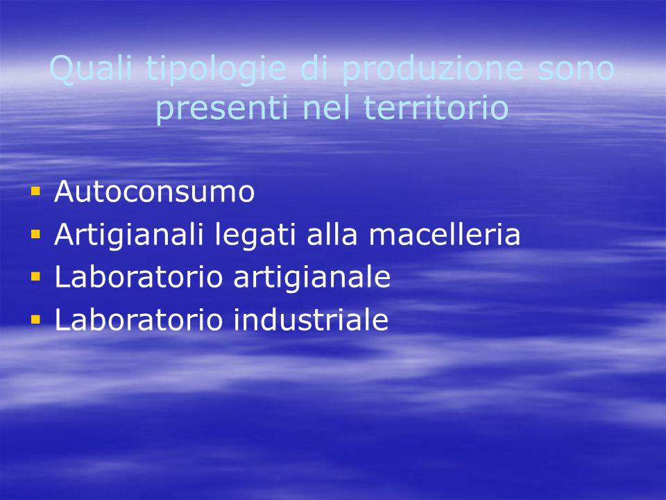 Quali tipologie di produzione sono presenti nel territorio   Autoconsumo   Artigianali legati alla macelleria   Laboratorio artigianale   Laboratorio industriale