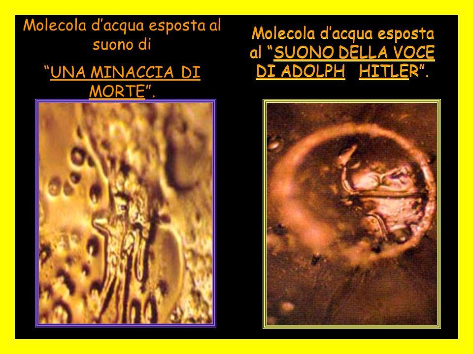 """Molecola d'acqua esposta al """"SUONO DELLA VOCE DI ADOLPH HITLER"""". Molecola d'acqua esposta al suono di """"UNA MINACCIA DI MORTE""""."""
