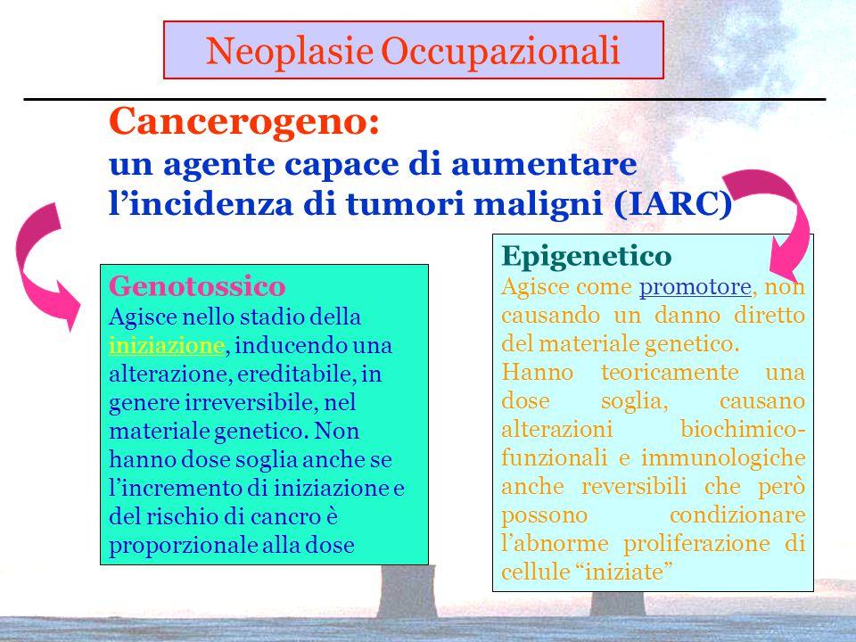 Cancerogeno: un agente capace di aumentare l'incidenza di tumori maligni (IARC) Genotossico Agisce nello stadio della iniziazione, inducendo una alterazione, ereditabile, in genere irreversibile, nel materiale genetico.