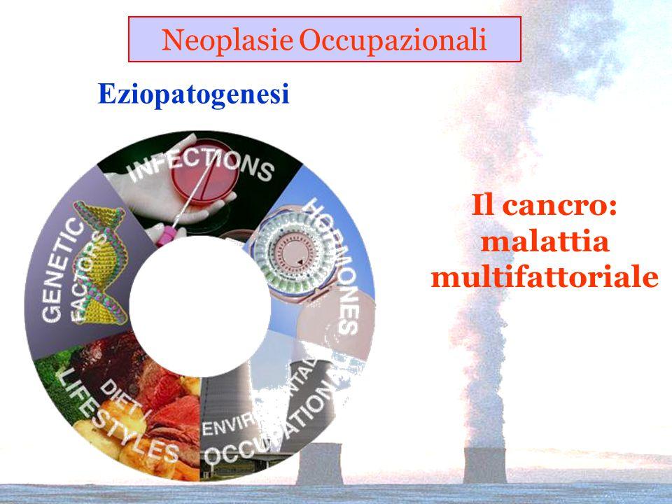 Eziopatogenesi Neoplasie Occupazionali Il cancro: malattia multifattoriale