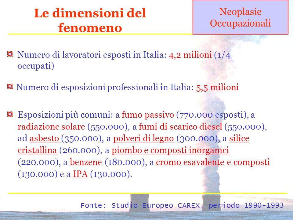 Le dimensioni del fenomeno Numero di lavoratori esposti in Italia: 4,2 milioni (1/4 occupati) Numero di esposizioni professionali in Italia: 5,5 milioni Fonte: Studio Europeo CAREX, periodo 1990-1993 Esposizioni più comuni: a fumo passivo (770.000 esposti), a radiazione solare (550.000), a fumi di scarico diesel (550.000), ad asbesto (350.000), a polveri di legno (300.000), a silice cristallina (260.000), a piombo e composti inorganici (220.000), a benzene (180.000), a cromo esavalente e composti (130.000) e a IPA (130.000).