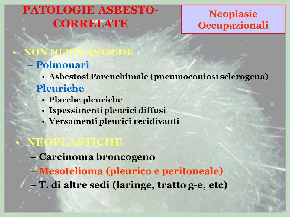 PATOLOGIE ASBESTO- CORRELATE NON NEOPLASTICHE –Polmonari Asbestosi Parenchimale (pneumoconiosi sclerogena) –Pleuriche Placche pleuriche Ispessimenti pleurici diffusi Versamenti pleurici recidivanti NEOPLASTICHE –Carcinoma broncogeno –Mesotelioma (pleurico e peritoneale) –T.
