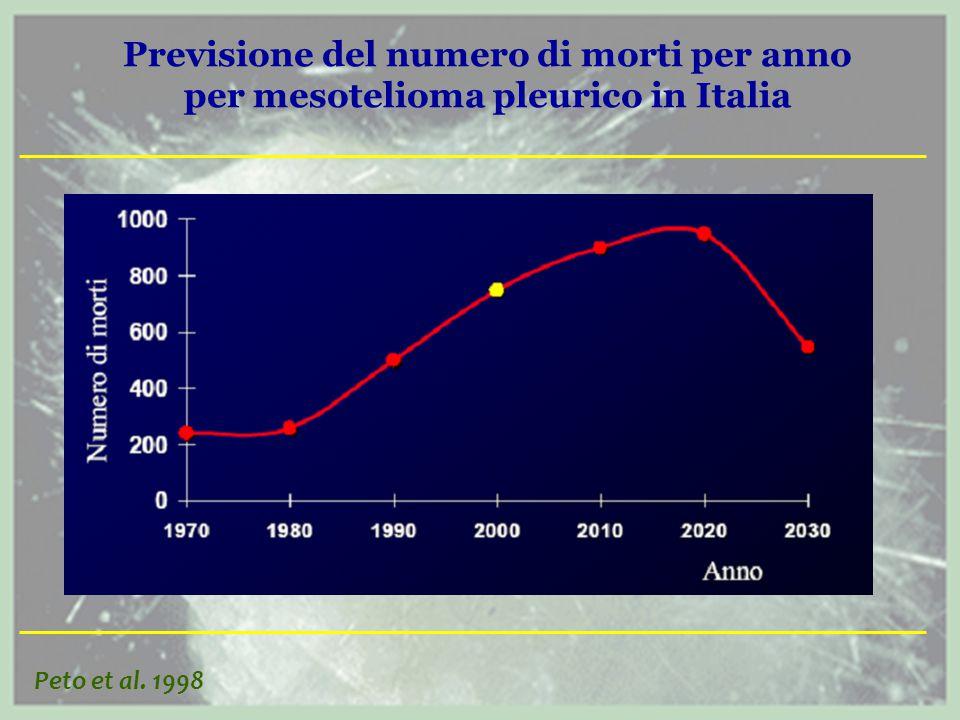 Previsione del numero di morti per anno per mesotelioma pleurico in Italia Peto et al. 1998