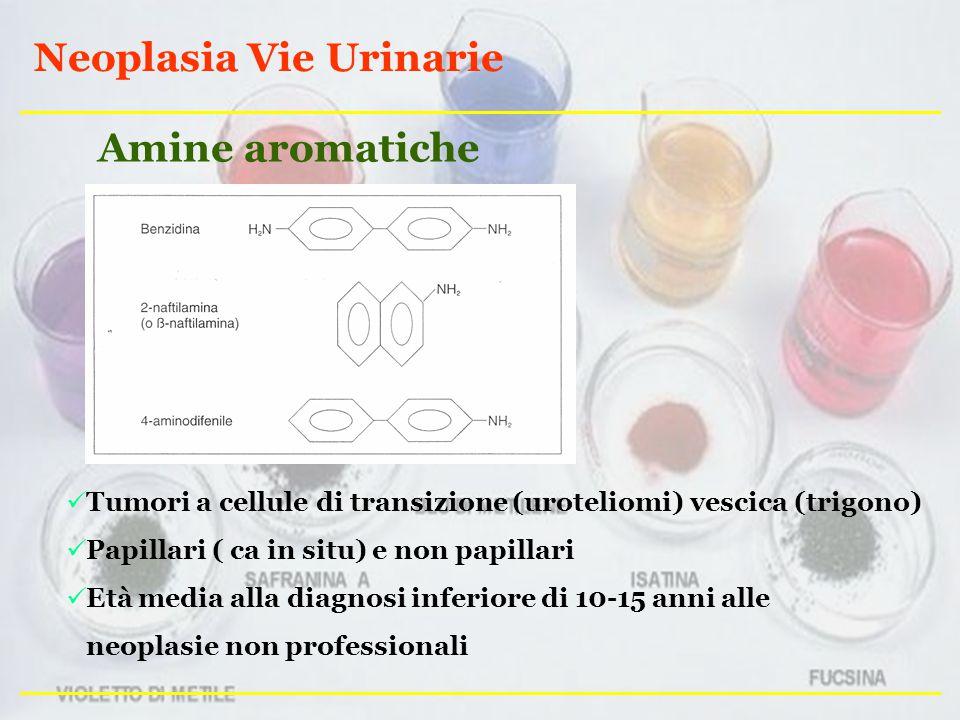 Neoplasia Vie Urinarie Tumori a cellule di transizione (uroteliomi) vescica (trigono) Papillari ( ca in situ) e non papillari Età media alla diagnosi inferiore di 10-15 anni alle neoplasie non professionali Amine aromatiche