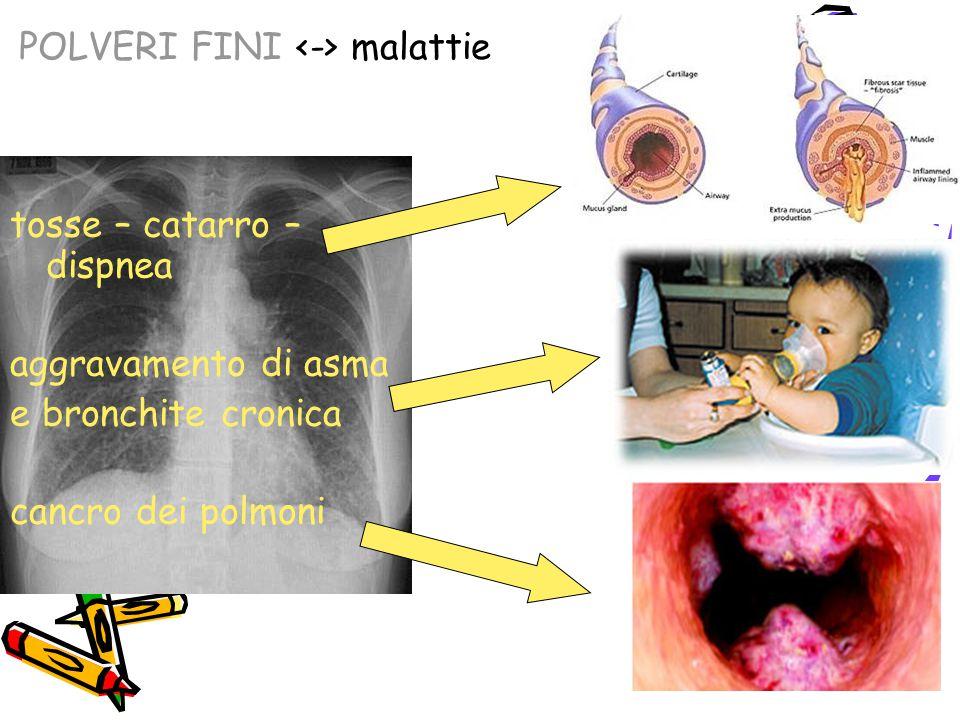 POLVERI FINI malattie tosse – catarro – dispnea aggravamento di asma e bronchite cronica cancro dei polmoni